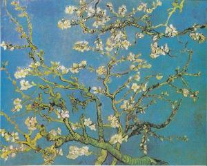 flower buds van gogh
