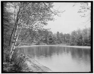 Thoreau_ Lake Waldon