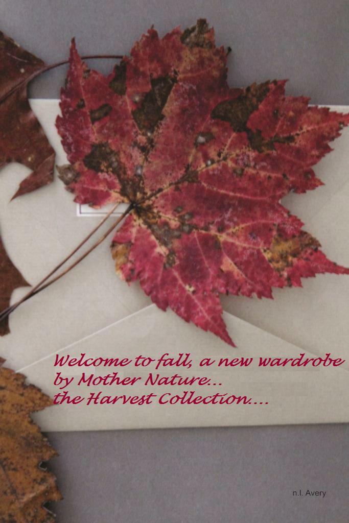 leaf poem_compressed2